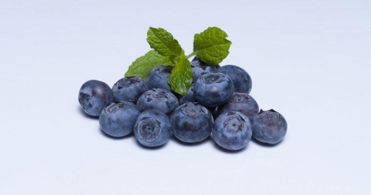Blueberry coconut cake – gluten-free, dairy-free, sugar-free