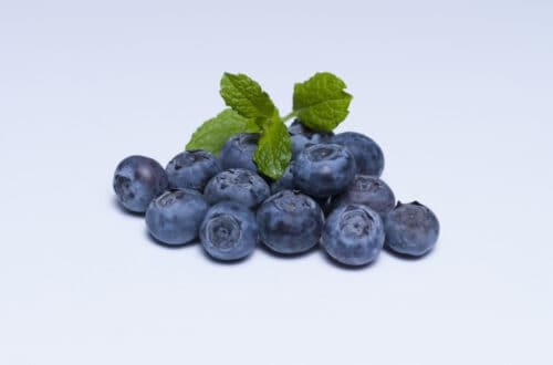 Blueberry cake - gluten-free, dairy-free, sugar-free